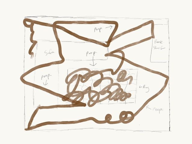roomba poop map drawing of living room
