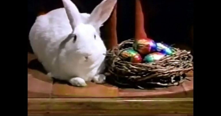 4 Funny Easter Commercials That Will Make Your Day